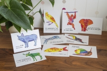 farbige Tiere - Postkartenset Collection 2